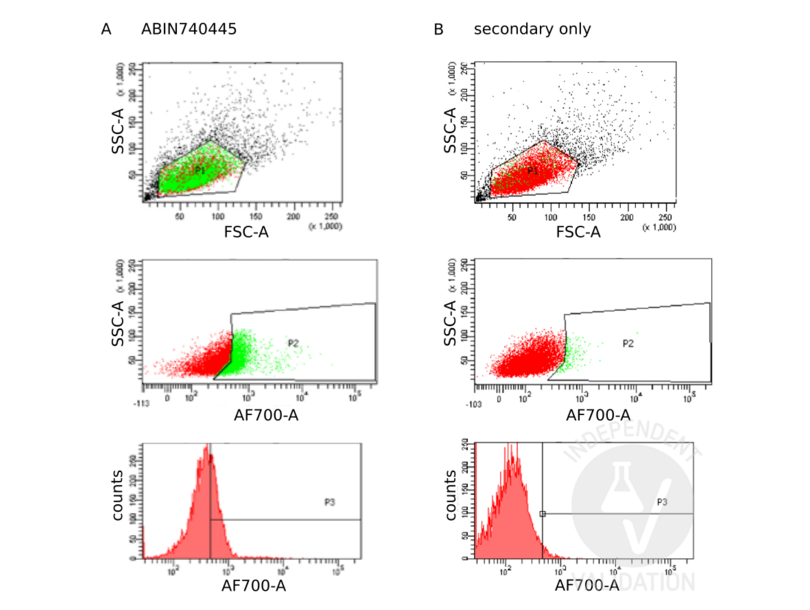 Flow Cytometry validation image for anti-Tumor Necrosis Factor Receptor Superfamily, Member 9 (TNFRSF9) (AA 115-165) antibody (ABIN740445)