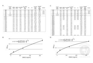 ELISA validation image for Enolase 2 (Gamma, Neuronal) (ENO2) ELISA Kit (ABIN1305165)