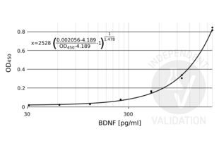 Brain-Derived Neurotrophic Factor (BDNF) ELISA Kit (2)