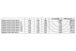 ELISA validation image for Matrix Metallopeptidase 3 (Stromelysin 1, Progelatinase) (MMP3) ELISA Kit (ABIN364941)
