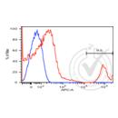 anti-CD20 antibody (Membrane-Spanning 4-Domains, Subfamily A, Member 1)  (APC)
