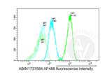 Flow Cytometry validation image for anti-Nucleophosmin (Nucleolar phosphoprotein B23, Numatrin) (NPM1) (AA 250-298), (C-Term) antibody (ABIN1737584)