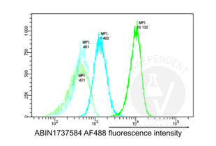 Flow Cytometry validation image for anti-Nucleophosmin (Nucleolar phosphoprotein B23, Numatrin) (NPM1) (AA 250-298), (C-Term) antibody (ABIN1737584)