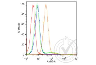 anti-K-Cadherin (CDH6) (AA 310-360) antibody (2)