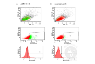 Flow Cytometry validation image for anti-Tumor Necrosis Factor Receptor Superfamily, Member 9 (TNFRSF9) (AA 115-165) antibody (ABIN740445)