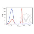 anti-CD4 Antikörper (CD4 Molecule) (AA 1-390) (FITC)