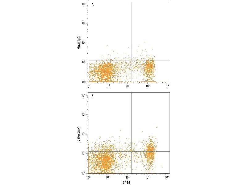 Flow Cytometry (FACS) image for anti-Lectin, Galactoside-Binding, Soluble, 1 (LGALS1) (AA 2-135) antibody (ABIN4899422)
