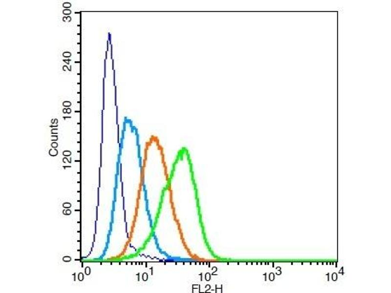 Flow Cytometry (FACS) image for anti-CD11b antibody (Integrin alpha M) (AA 520-570) (ABIN741285)