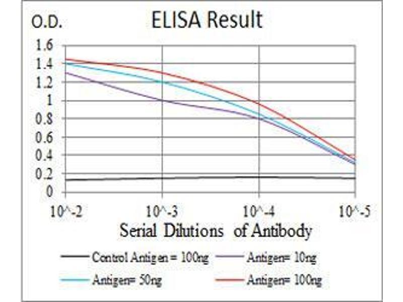ELISA image for anti-Luteinizing Hormone/choriogonadotropin Receptor (LHCGR) antibody (ABIN4880840)