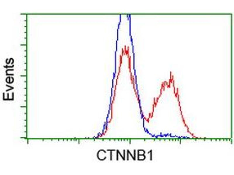 Flow Cytometry (FACS) image for anti-CTNNB1 antibody (Catenin (Cadherin-Associated Protein), beta 1, 88kDa) (ABIN2454138)