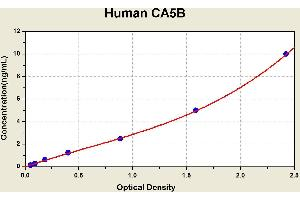 Image no. 1 for Carbonic Anhydrase VB, Mitochondrial (CA5B) ELISA Kit (ABIN1113945)