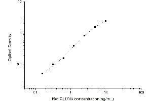 Image no. 1 for Claudin 5 (CLDN5) ELISA Kit (ABIN6963311)