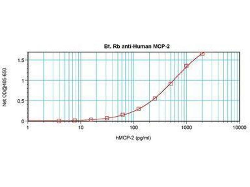 image for anti-Chemokine (C-C Motif) Ligand 8 (CCL8) antibody (Biotin) (ABIN465683)