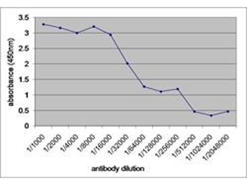 image for anti-V5 Epitope Tag antibody (ABIN304867)