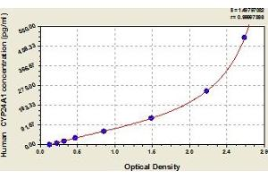 Image no. 1 for Cytochrome P450, Family 24, Subfamily A, Polypeptide 1 (CYP24A1) ELISA Kit (ABIN6976119)