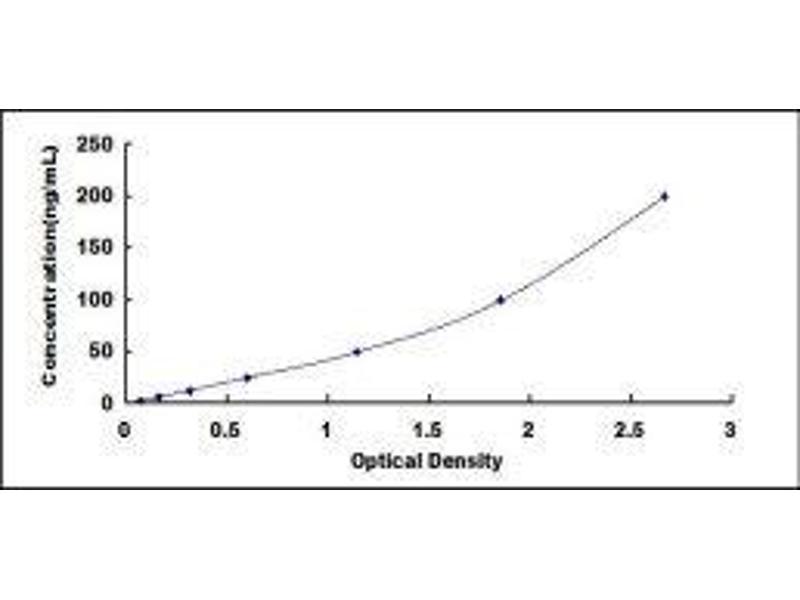 Insulin-Like Growth Factor Binding Protein 4 (IGFBP4) ELISA Kit (5)