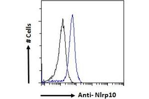 Image no. 1 for anti-NLR Family, Pyrin Domain Containing 10 (NLRP10) (N-Term) antibody (ABIN1019668)