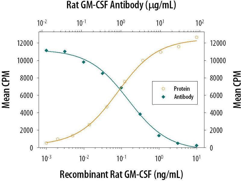 Neutralization (Neut) image for anti-Colony Stimulating Factor 2 (Granulocyte-Macrophage) (CSF2) (AA 1-127) antibody (ABIN4898951)