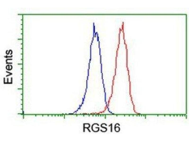 Image no. 2 for anti-Regulator of G-Protein Signaling 16 (RGS16) antibody (ABIN4350332)