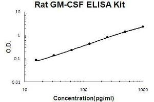 ELISA image for CSF2 ELISA Kit (Colony Stimulating Factor 2 (Granulocyte-Macrophage)) (ABIN921059)