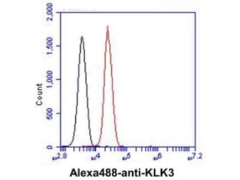 Flow Cytometry (FACS) image for anti-Kallikrein B, Plasma (Fletcher Factor) 1 (KLKB1) (AA 25-261) antibody (ABIN4346083)