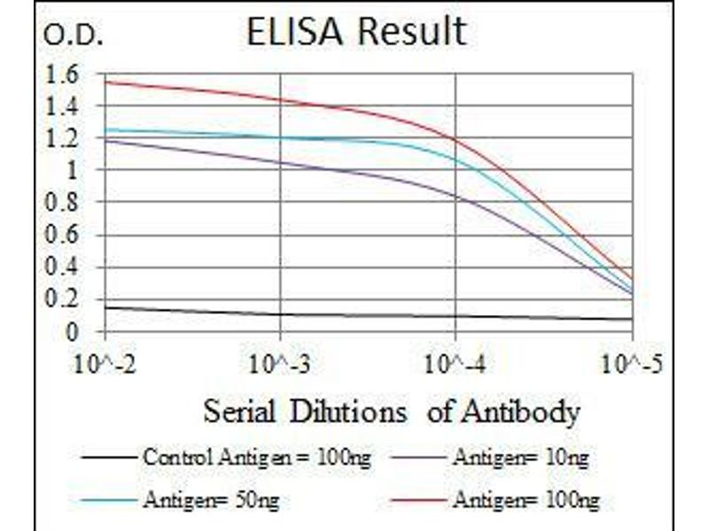 ELISA image for anti-Cyclin-Dependent Kinase 2 (CDK2) antibody (ABIN969506)