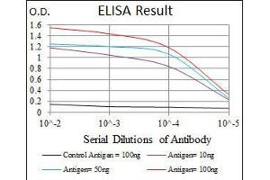 ELISA image for anti-CDK2 antibody (Cyclin-Dependent Kinase 2) (ABIN969506)