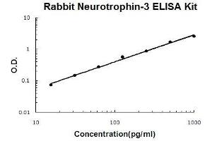 Image no. 1 for Neurotrophin 3 (NTF3) ELISA Kit (ABIN5510558)