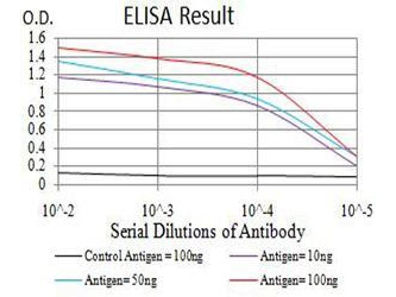 Image no. 2 for anti-Estrogen Receptor 1 (ESR1) (AA 2-185) antibody (ABIN5684053)