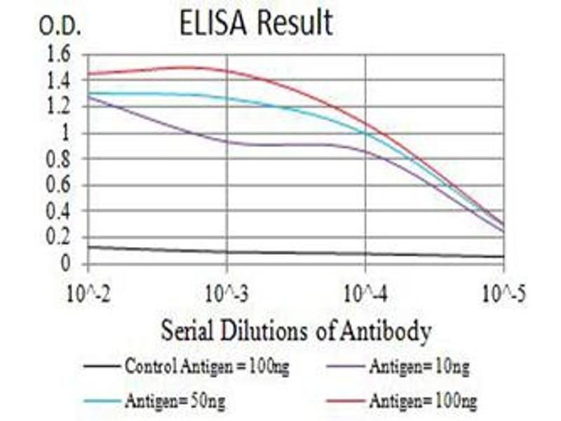 ELISA image for anti-Glutamate Receptor, Metabotropic 5 (GRM5) (AA 458-580) antibody (ABIN5611178)