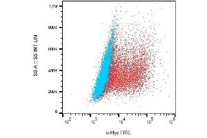 Flow Cytometry (FACS) image for anti-V-Myc Myelocytomatosis Viral Oncogene Homolog (Avian) (MYC) (C-Term) antibody (FITC) (ABIN302017)