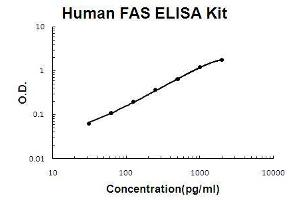 Image no. 1 for Fas (TNF Receptor Superfamily, Member 6) (FAS) ELISA Kit (ABIN411269)