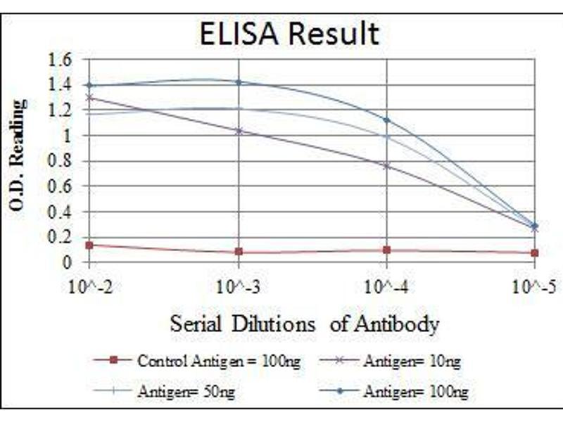 ELISA image for anti-Heat Shock 27kDa Protein 1 (HSPB1) antibody (ABIN4880328)