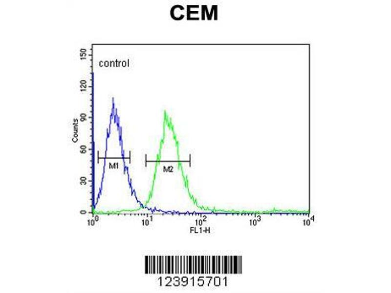 Flow Cytometry (FACS) image for anti-FCGR1B antibody (Fc Fragment of IgG, High Affinity Ib, Receptor (CD64)) (AA 248-276) (ABIN653144)