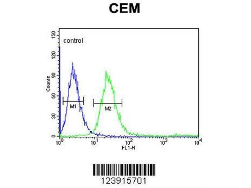 Flow Cytometry (FACS) image for anti-FCGR1B antibody (Fc Fragment of IgG, High Affinity Ib, Receptor (CD64)) (AA 248-276) (ABIN653144)