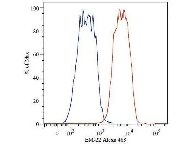 Flow Cytometry (FACS) image for anti-Catenin (Cadherin-Associated Protein), beta 1, 88kDa (CTNNB1) (AA 441-448), (C-Term) antibody (ABIN457419)