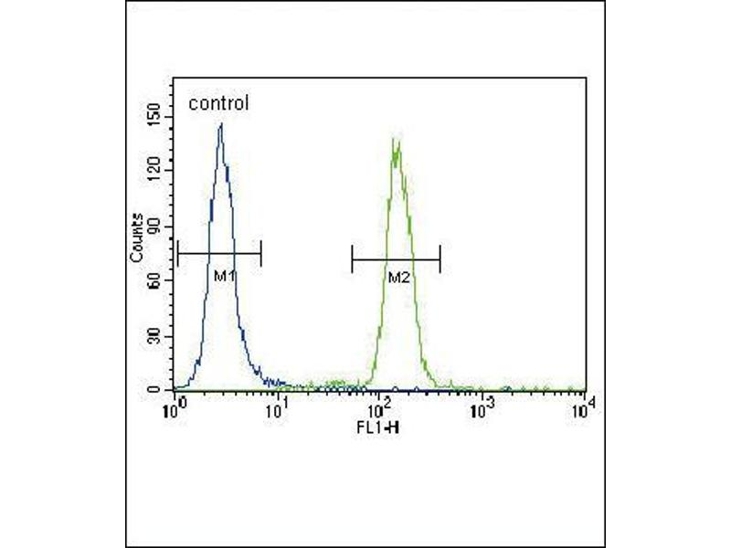 Flow Cytometry (FACS) image for anti-BBC3 antibody (BCL2 Binding Component 3) (BH3 Domain) (ABIN2491786)
