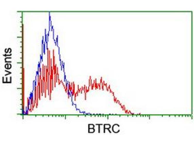 image for anti-beta-Transducin Repeat Containing (BTRC) (AA 52-354) antibody (ABIN1491576)