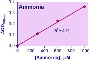 Biochemical Assay (BCA) image for Ammonia Assay Kit (ABIN1000323)