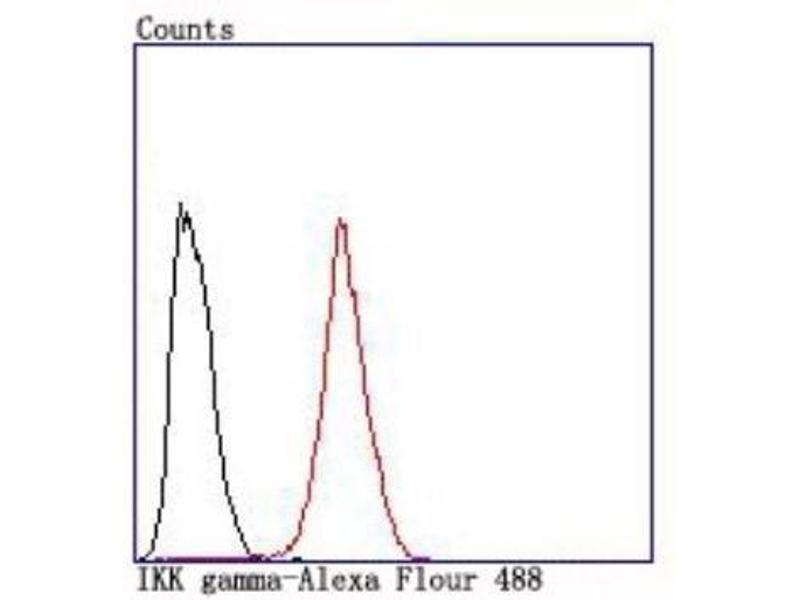 Flow Cytometry (FACS) image for anti-Inhibitor of kappa Light Polypeptide Gene Enhancer in B-Cells, Kinase gamma (IKBKG) (C-Term) antibody (ABIN5950289)