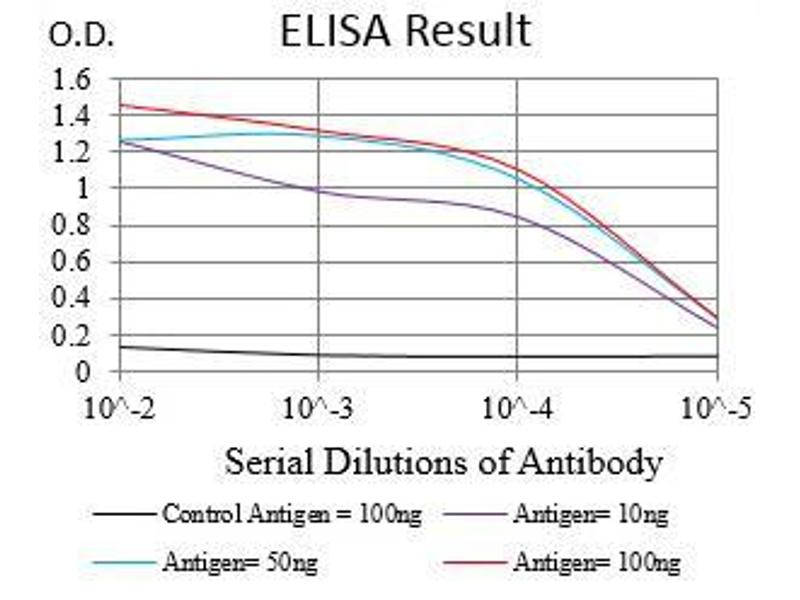 ELISA image for anti-EGFR antibody (Epidermal Growth Factor Receptor) (AA 693-893) (ABIN1724890)