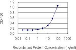Image no. 2 for anti-Dystrobrevin Binding Protein 1 (DTNBP1) (AA 1-100) antibody (ABIN529552)