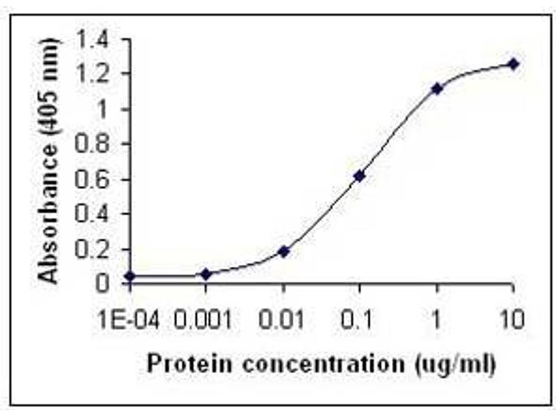 ELISA image for anti-IFNA2 antibody (Interferon, alpha 2) (ABIN262144)