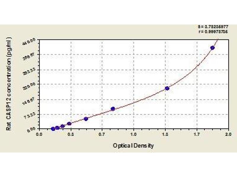 Caspase 12 (Gene/pseudogene) (CASP12) ELISA Kit