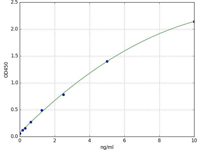Caspase 2, Apoptosis-Related Cysteine Peptidase (CASP2) ELISA Kit