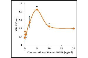 Image no. 1 for Platelet-Derived Growth Factor alpha Polypeptide (PDGFA) (Active) protein (ABIN5509326)