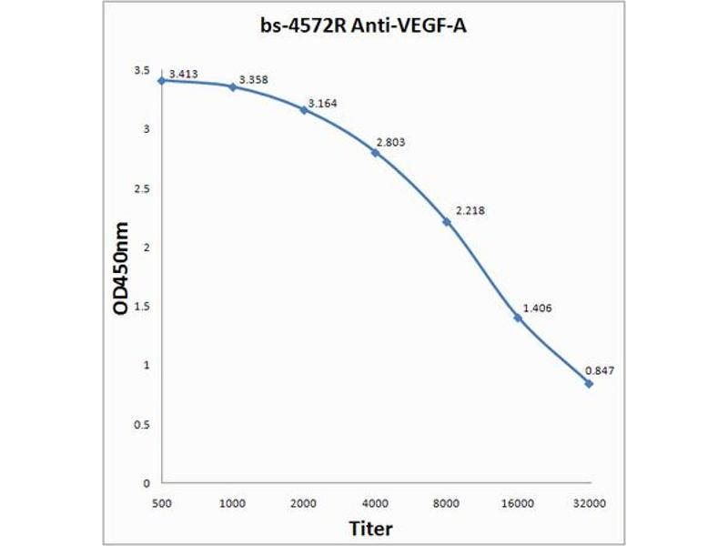 ELISA image for anti-VEGF antibody (Vascular Endothelial Growth Factor A) (AA 130-180) (ABIN707186)