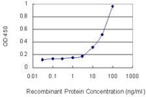 Image no. 1 for anti-Connective Tissue Growth Factor (CTGF) (AA 31-251) antibody (ABIN514745)