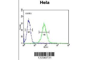 Image no. 1 for anti-SET and MYND Domain Containing 1 (SMYD1) (AA 420-449), (C-Term) antibody (ABIN654906)