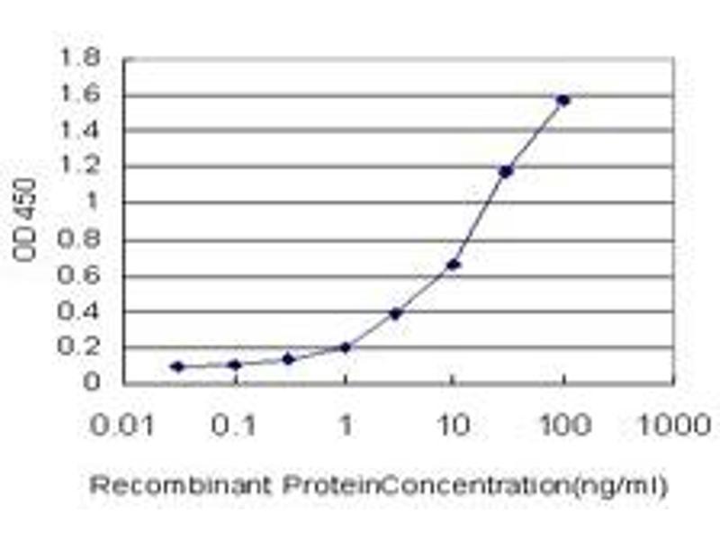 ELISA image for anti-Calcium/calmodulin-Dependent Protein Kinase (CaM Kinase) II beta (CAMK2B) (AA 1-504) antibody (ABIN614553)